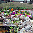 Cntrl_gardens_of_n_iowa2