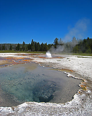 Old Faithful031