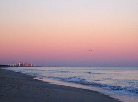 Beach Scenes032