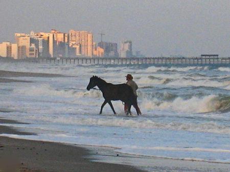 Equest Beach023