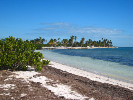 most of the  mercial campgrounds in the keys charge  70 a night  or more  for sites but there are two or three state parks in the keys that have camping     living our dream   rh   here4now typepad