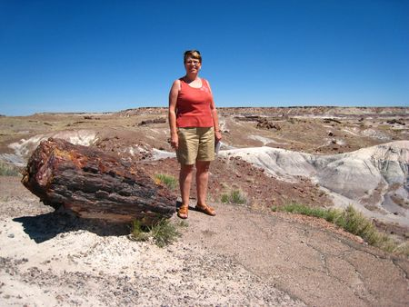 Petrified Forest015
