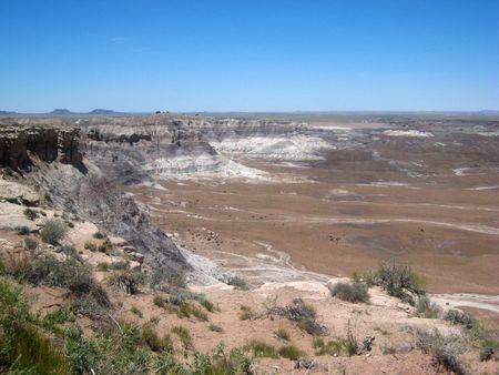 Petrified Forest072