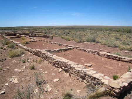 Petrified Forest107