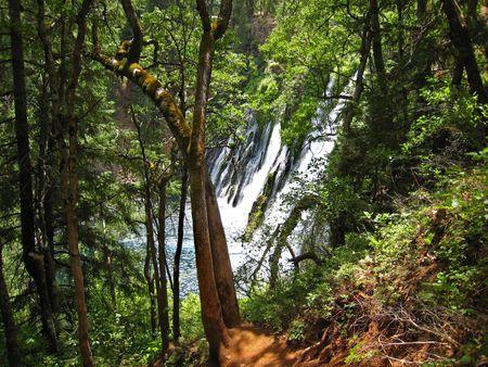 Burney Falls023