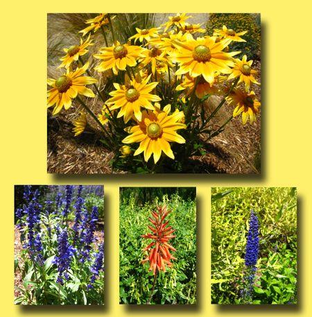 Flower Composite 1
