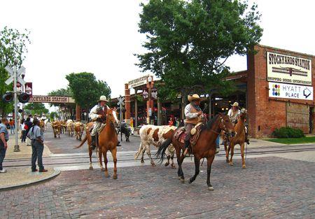 Fort Worth011