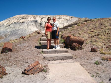 Petrified Forest019