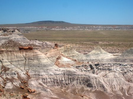 Petrified Forest066