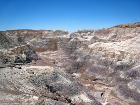 Petrified Forest086