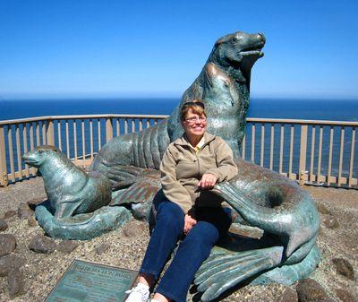 Sea Lions010