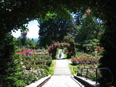 Port Rose Garden035