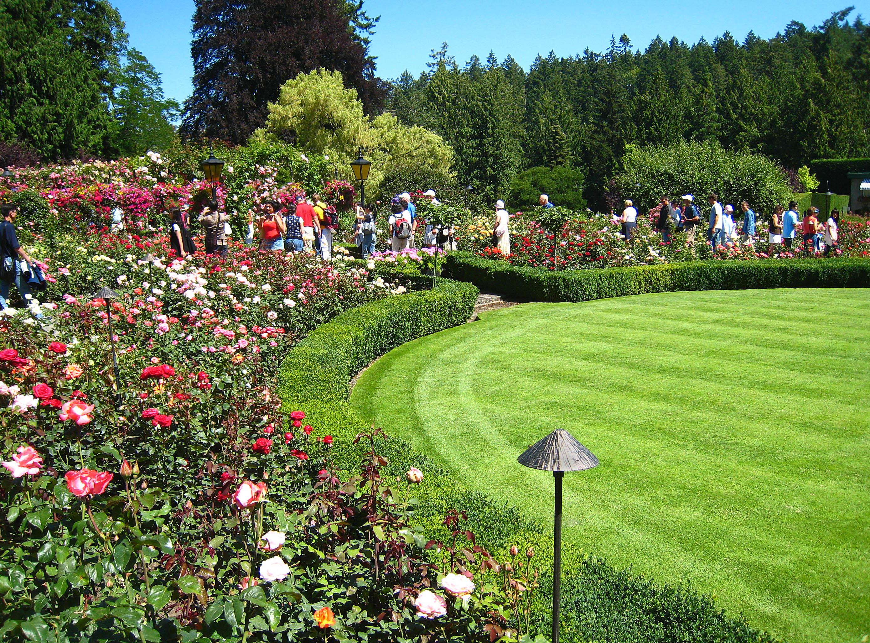 Rose Garden Butchart Gardens Collection 10 Wallpapers