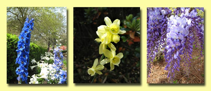 Flower Composite copy