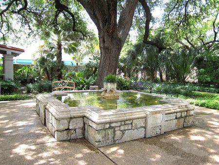 Alamo_0016