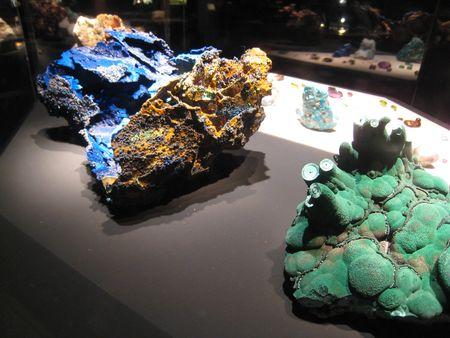 Desert Museum_0018