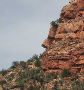 Verde Canyon RR_0037