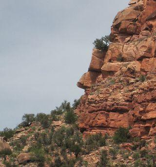 Verde Canyon RR_0037