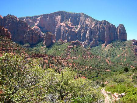 Zion Kolob Canyon_0030
