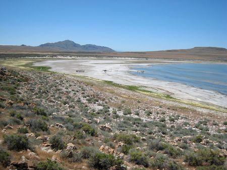 Antelope Island_0022