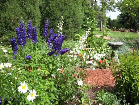 Botanic Garden_0011