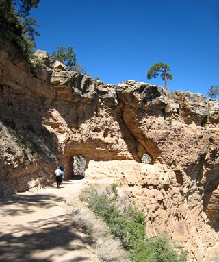 Bright angel Trail_0003