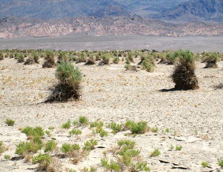 Death Valley_0024