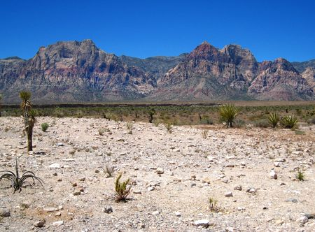 Red Rock Canyon_0002