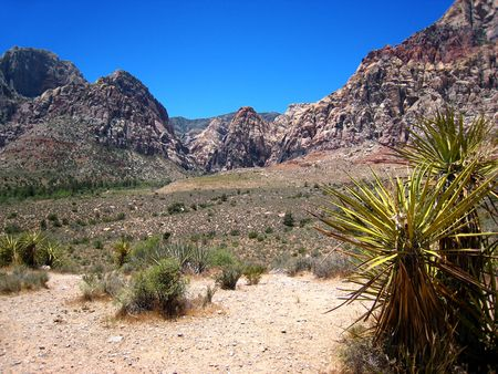Red Rock Canyon_0027