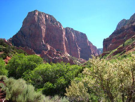 Zion Kolob Canyon_0001