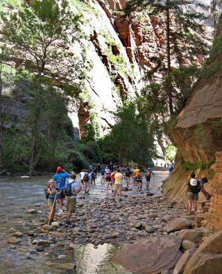 Zion Canyon_0024