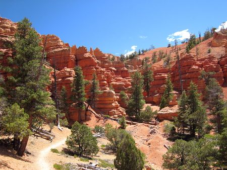 Red Canyon_0016
