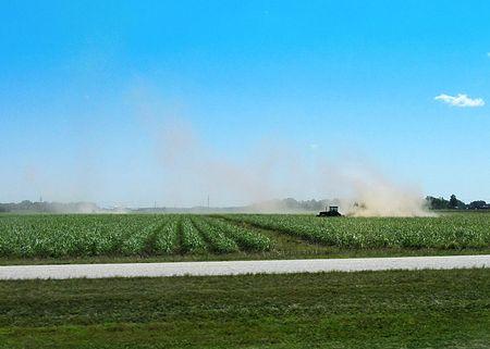 Louisiana Drought_0052