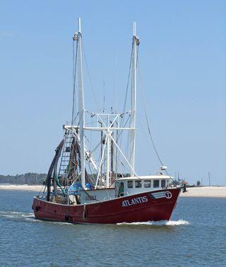 Shrimp Cruise_0053