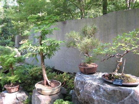 Garvan Gardens M_0080