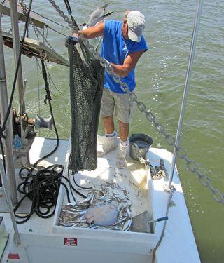 Shrimp Cruise_0022