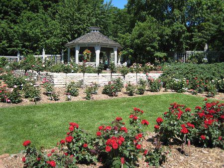 Landscape Arboretum M_0086