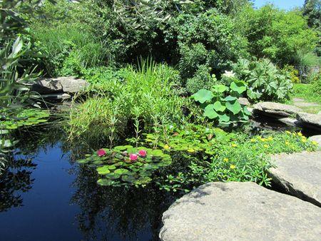 Olbrich Gardens_0031