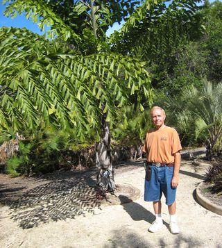 Florida Botanical Garden M_0050