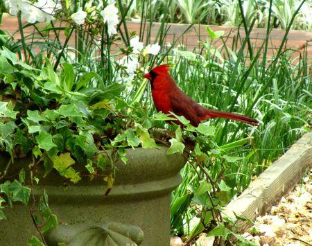 Callaway Gardens_0055