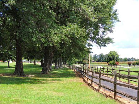 Parkers Crossroads Battlefield_0020