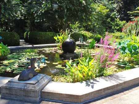 Dixon Gardens_0008