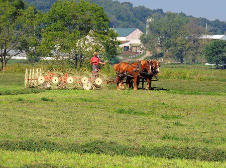 Holmes County Farming_0012