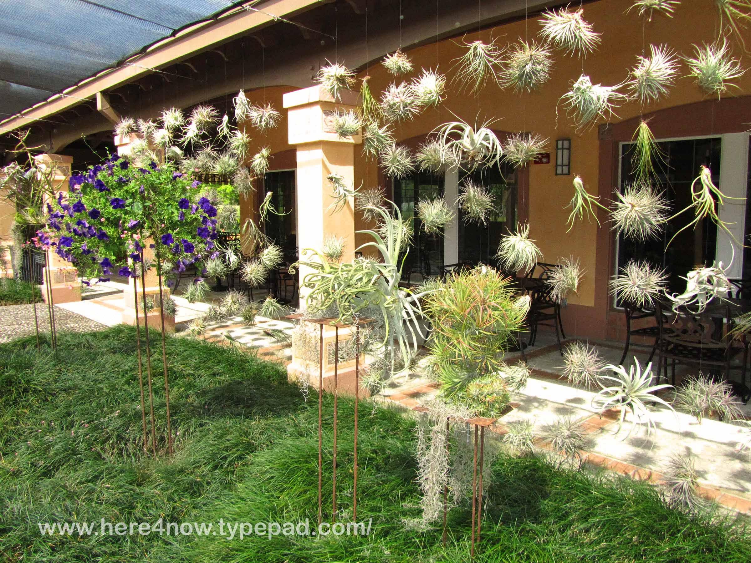 Living Our Dream Bok Tower Gardens