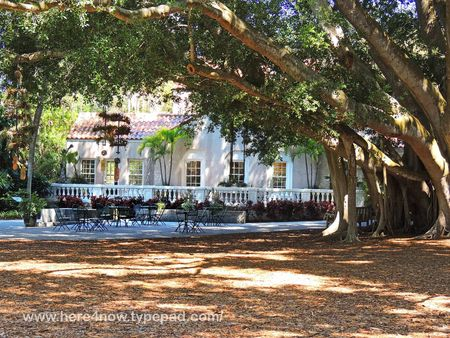 Selby Gardens_0018