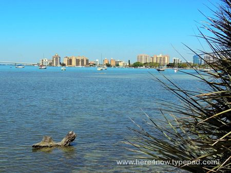 Selby Gardens_0031