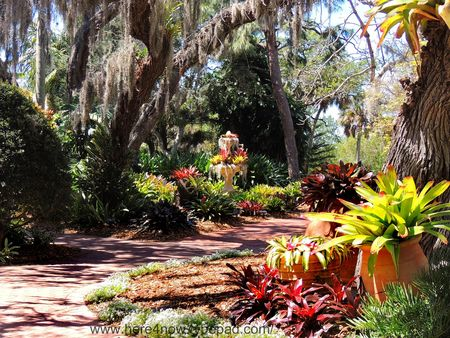Selby Gardens_0048