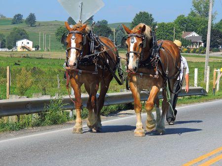 Holmes County Farming_0013