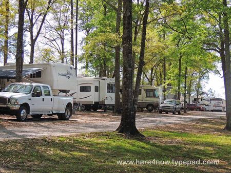 Florida Springs RV_0002