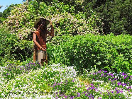 Memphis Botanical Garden_0062